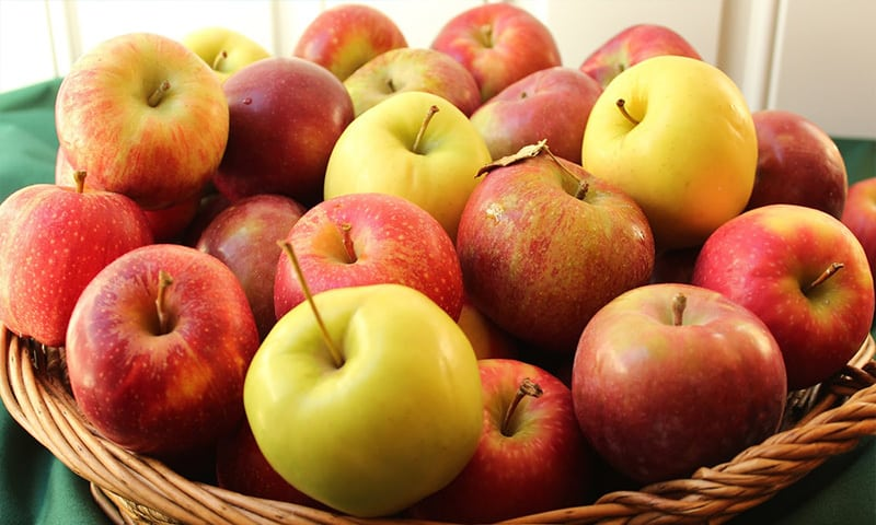 influenta climei asupra fructelor si legumelor