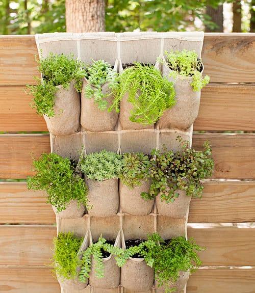 9. gradina pe verticala cu saculeti de flori