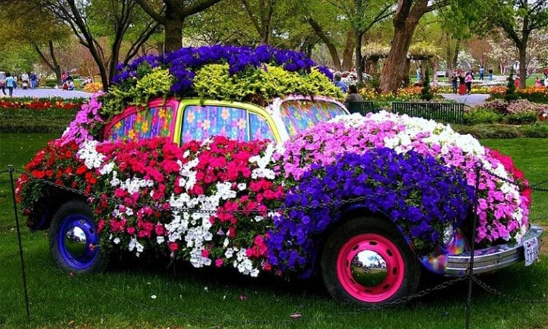 suport de flori masina