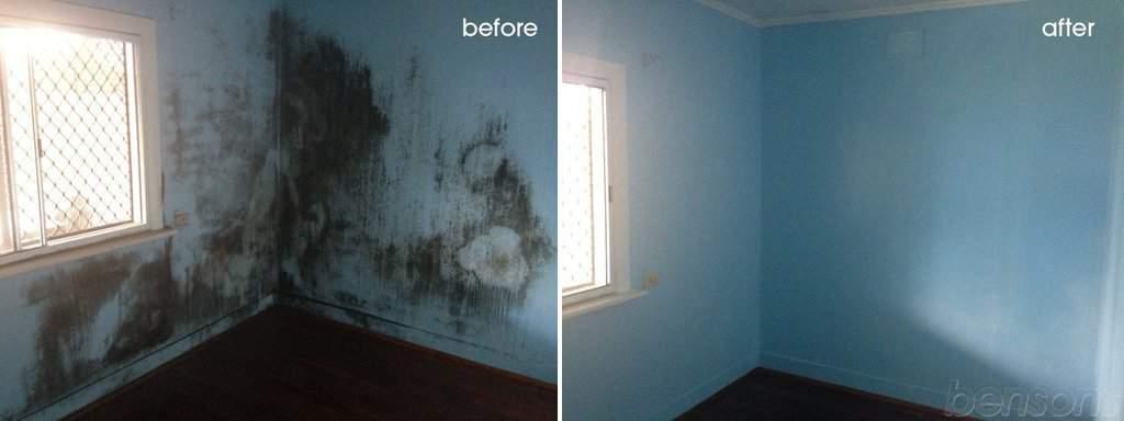 curatare perete de mucegai