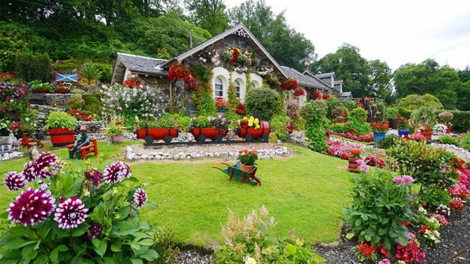 casa si gradina plina de flori