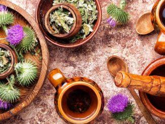 armurariu remedii si beneficii