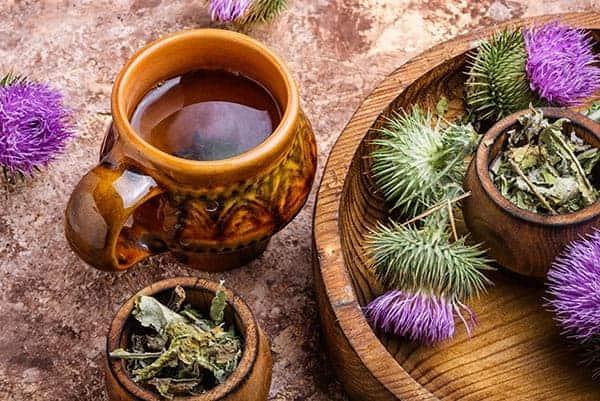 ceai de armurariu