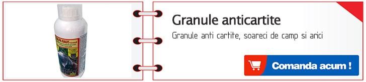 granule anticartite