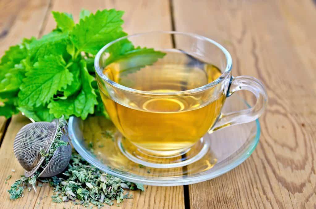 ceai de roinita melisa
