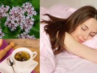 ceai de valeriana pentru un somn bun