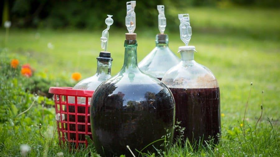 damingene de vin