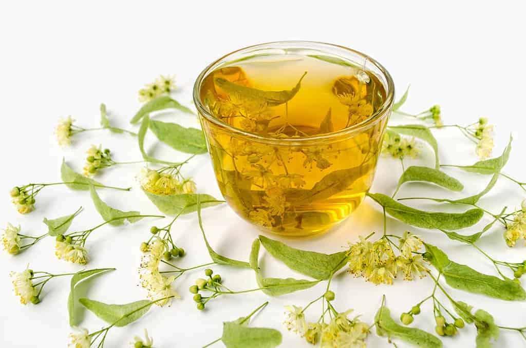 ceai de tei colesterol trigliceride mari