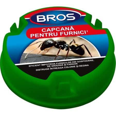capcane furnici