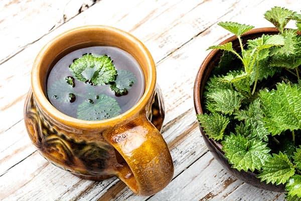 ceai de urzica vie