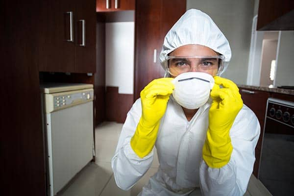 servicii dezinsectie furnici bucuresti